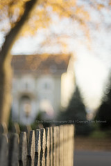 Focus on what you want, not what you don't want. (dog ma) Tags: bokeh autumn day fence depthoffield nikon d750 nikkor 50mm dogma jodytrappephotography