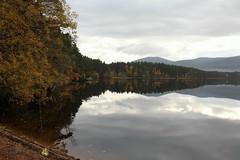 Loch Garten (foxylady29 Carole Fox) Tags:
