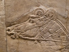 Horse (Aidan McRae Thomson) Tags: nineveh relief britishmuseum london assyrian sculpture mesopotamia ancient