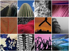 2016 Mosaic / Mosaico (ix 2017) Tags: fdsflickrtoys israfel67 méxico mexico mosaico mosaic anual yearly year año fotos photos lomejor top12