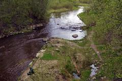 River Vantaanjoki, Myllykoski rapid (Palojoki, Nurmijärvi, 20120512) (RainoL) Tags: finland river geotagged spring vantaanjoki may u fin rapid 2012 uusimaa nurmijärvi 201205 myllykoski palojoki 20120512 geo:lat=6045543000 geo:lon=2485221500