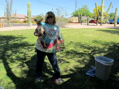 Pet Adoption Day (ajlibrary) Tags: arizona pets dogs animal desert library foster adoption apachejunction animalcontrol