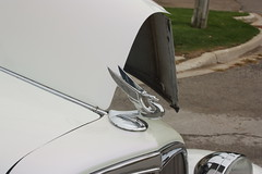 Cinderella's Classic Car show 6 (codie_horse) Tags: ontario canada fall cars october outdoor overcast trucks classiccars portelgin 2015 pumpkinfest differentangle differentcolours differntviews 1990orolder cinderellasclassiccarshow