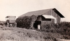 Shafter, July 1926 (Beedle Um Bum) Tags: summer house penner shafter