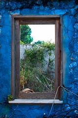 la finestra sul cortile (danilo.arigo) Tags: muro blu finestra crepe ramo vaso cornice filtro saturo