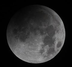 20150928 02-08 Lunar Eclipse (Roger Hutchinson) Tags: moon eclipse