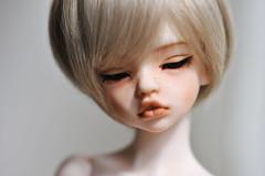 D.I.M Happy Laia (MINKAworks) Tags: cast resin doll eye close half laia dim makeup dollinmind bjd balljointeddoll