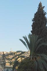Abu Darwish Mosque from Jebel Amman (2) (jrozwado) Tags: asia amman middleeast mosque jordan islamic circassian   abudarwish