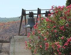 Cimitero Tedesco , Cassino Italia (danielebenvenuti) Tags: flower outdoors bell campana hopscotch fiori
