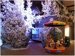 DSCI8469_ShiftN (aad.born) Tags: christmas xmas weihnachten navidad noel  tuin engel nol natale  kerstmis kerstboom kerst boi kerststal  kribbe versiering kerstshow  kerstversiering kerstballen kersfees kerstdecoratie tuincentrum kerstengel  attributen kerstkind kerstgroep aadborn nativitatis