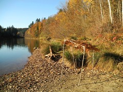 Sonnendach (almresi1) Tags: autumn lake beach strand germany herbst ufer spiegelung sonnenschutz schorndorf gppingen sonnendach adelberg herrenmhlsee