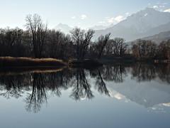 automne 2015_6 (JMVerco) Tags: reflection tree landscape switzerland suisse reflet paysage albero arbre paesaggio valais riflesso coth swizzera coth5 sailsevenseas