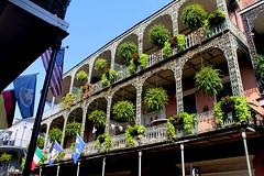Nola (jiggyofwallstreet) Tags: plants usa building verde green america plantas colorful neworleans edificio paisaje colores nola colourful
