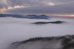 ...sopra un mare di nebbia... (elmoro1986) Tags: sunset italy parco naturaleza nature fog italia natura piemonte nebbia inverno niebla appennino capanne oltregiogo marcarolo parconaturalecapannedimarcarolo