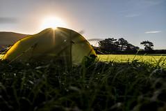 Round Wales Walk 48 - Bright & Beautiful! (Nikki & Tom) Tags: waleswalescoastpath roundwaleswalk uk gwynedd camping campsite tent fields cps2016