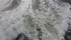 WAKE (dv-hans) Tags: flushing ferry prinsesmaxima prinswillemalexander skylineflushing breskens pilottender lynx orion raan kontich wake vlieree nautictrafficcentre