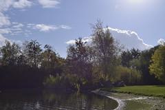 6_FarcetParkJpeg_DSC1146 (Kung Fu Jim) Tags: nature water sky sun trees