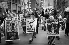 IMG_4490-1 (rawEarth) Tags: nodapl sanfrancisco nodakotaaccesspipeline rally march protest standingrocksioux solidarity climatechange keepitintheground rezpectourwater idlenomore northdakotaresistance lovewaternotoil waterprotectors nofossilfuels blackandwhite nativeamerican signs