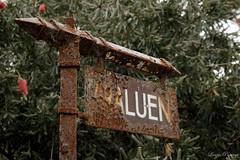 (Laszlo Papinot) Tags: famousflickrfive oceangrove placeofthewaterlilies sign rust rusty old araluen oakdele winery oakdelewinery spiderweb flake australianaboriginalword
