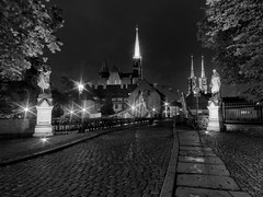 guards of the tale (Sergey S Ponomarev) Tags: sergeyponomarev canon urban paysage paesaggio landscape city citta poland polska 2016 travel bridge statues sculpture bw bn europe tourism autumn lights cathedral church                 catholic wroclaw towers   eos ef 70d le longexposure
