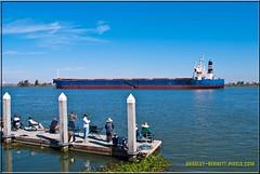 Nord Neptune_1511 LR (bradleybennett) Tags: cargo vessel ship shipping delta water river ocean tanker antioch port stockton
