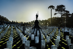 a gathering of long lost souls (pbo31) Tags: presidio sanfrancisco california nikon d810 color october fall 2016 boury pbo31 sanfrancisconationalcemetary sunset cemetary honor service fallen soul war america forces grave rest green shadow silhouette death civilwar monument soldier