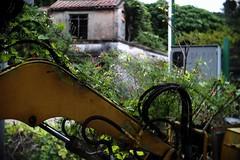 (a.pierre4840) Tags: olympus omd em5 cmount schneider kreuznach xenon 25mm f095 depthoffield dof rural decay construction machinery digger pengchau hongkong abandoned flowers