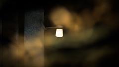 a flash photo of a light (grahamrobb888) Tags: nikon nikond800 nikkor afnikkor80200mm128ed flash birnam homegarden light cornerlight bokeh