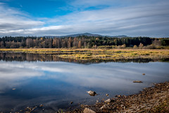 (Petr Havek) Tags: landscape river riverside morning mountians forrest mirror clouds sunnyday fall explore nature autmn trees water fujifilm reflection outdoor czech wandering