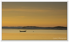 Golden Solitude, Holy Island (Blondie606 Photography) Tags: bamburghcastle sunrise sunset northumberland beach sea steetlypier longexposure lighhouse newcastlequay pastel frosty golden boats chemicalbeach seaham hartlepool