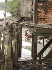IMG_3333 (program monkey) Tags: vietnam mekong river delta cargo boat ben tre tra vinh wash dish riverside shore