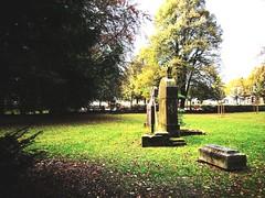 2016-10-22_10-48-25 (txchris86) Tags: stadtpark park natur nature herbst autumn day tagsber trees tree baum bume plants graves grabmhler citypark edited