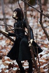 009 (Kumaguro) Tags: bjd dollshe husky dollshehusky dollsheoldhusky autumn earlywinter dark gothic forest