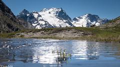 Lac du Golon (2458m) (Quentin Douchet) Tags: alpes alpesfranaises alps eau frenchalps lameije3983m lacdugolon lacdugolon2458m lac lake landscape montagne mountain panorama paysage sommet summit water