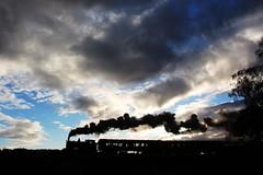 Great Western steam locomotive 813. (Keith Wilko) Tags: svr severnvalleyrailway steamtrain steam steamlocomotives steamengine uksteamlocomotives locomotive loco svrlocomotives severnvalleysteam sevenvalleyrailway 813 loco813 813loco train813 svr813 bewdley westmidlandsafaripark