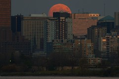 Supermoon and the city (beyondhue) Tags: supermoon full moon perigee moonrise rising beyondhue ottawa ontario canada architecture building highrise