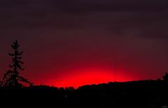Le Rouge et le Noir (kov-A-c) Tags: red rouge scarlet noir pine wood hill sunrise daybreak light nature aerial scene stilllife cloudy cover antenna piros fekete stendhal novel kizil sun minimal romantic sx50 bloodred windy day coming vörös