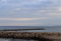 013023 - Hospitalet del Infante (M.Peinado) Tags: pescador pescadores costa mar marmediterrneo hospitaletdelinfante lhospitaletdelinfant vandellsyhospitaletdelinfante vandellsilhospitaletdelinfant bajocampo baixcamp provinciadetarragona catalua espaa spain 07092016 septiembrede2016 2016 canoneos60d canon copyright