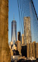 Stone to steel (D. Inscho) Tags: newyorkcity manhattan brooklynbridge oneworldtrade canon5diii 2470mm28