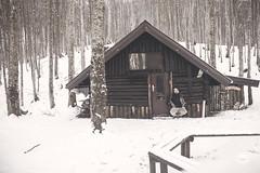 Magic House (Caste.) Tags: baita home caste kaste woods place warm alone wilderness aveto italy colore liguria boschi