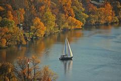 Vltava (greyowl2) Tags: moldau vltava praha prague vysehrad sail boat