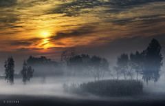 Winter morning (xeeart) Tags: sunrise village villagelife morning mist fog clouds light people punjab pakistan culture winters winter travel trees tree rays