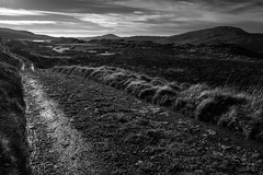Lonely Track (evans.photo) Tags: road hills mountains winter clouds water landscape mono ponds ceredigion wales