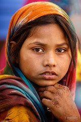 Untitled (Shameem Shah) Tags: portrait colorful girls travel street eyes photography india shutterarts pushkar turban rajasthan villager