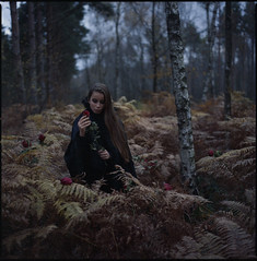 the things she'll do for a wimpy (steve-jack) Tags: hasselblad 501cm 80mm cb kodak portra 800 sample 1998 expired woods forest autumn film medium format 120 6x6