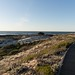 38 (nosha) Tags: asilomar pacific pg pacificgrove beach 38 beauty sand blue sky path