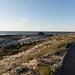 38 (nosha) Tags: asilomar pacific pg pacificgrove beach 38 beauty sand blue sky path