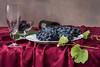 Natura Morta Istarska (suzanne~) Tags: stilllife lensbaby wine indoor grapes wineglass tabletop istrian velvet56