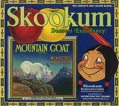 "Skookum Mountain Goat • <a style=""font-size:0.8em;"" href=""http://www.flickr.com/photos/136320455@N08/21283906068/"" target=""_blank"">View on Flickr</a>"