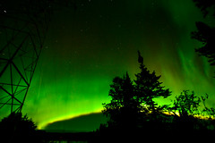 GreenRainbow (PurplePerpetrator) Tags: trees sky ontario canada night stars lights aurora northern northernlights auroraborealis borealis